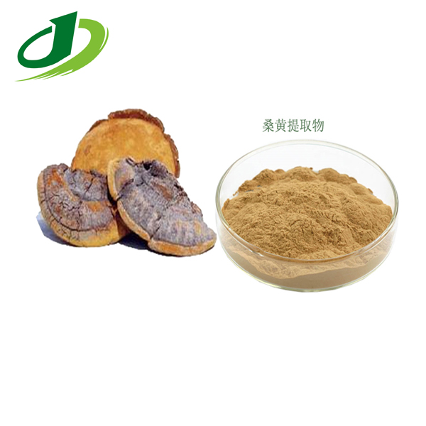 Common Phellinus Fungus extract